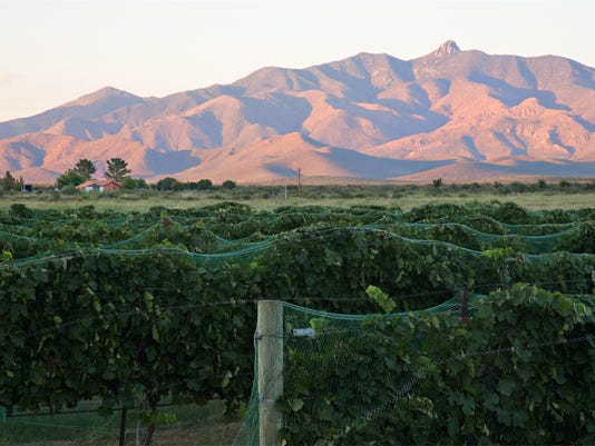Willcox wine country
