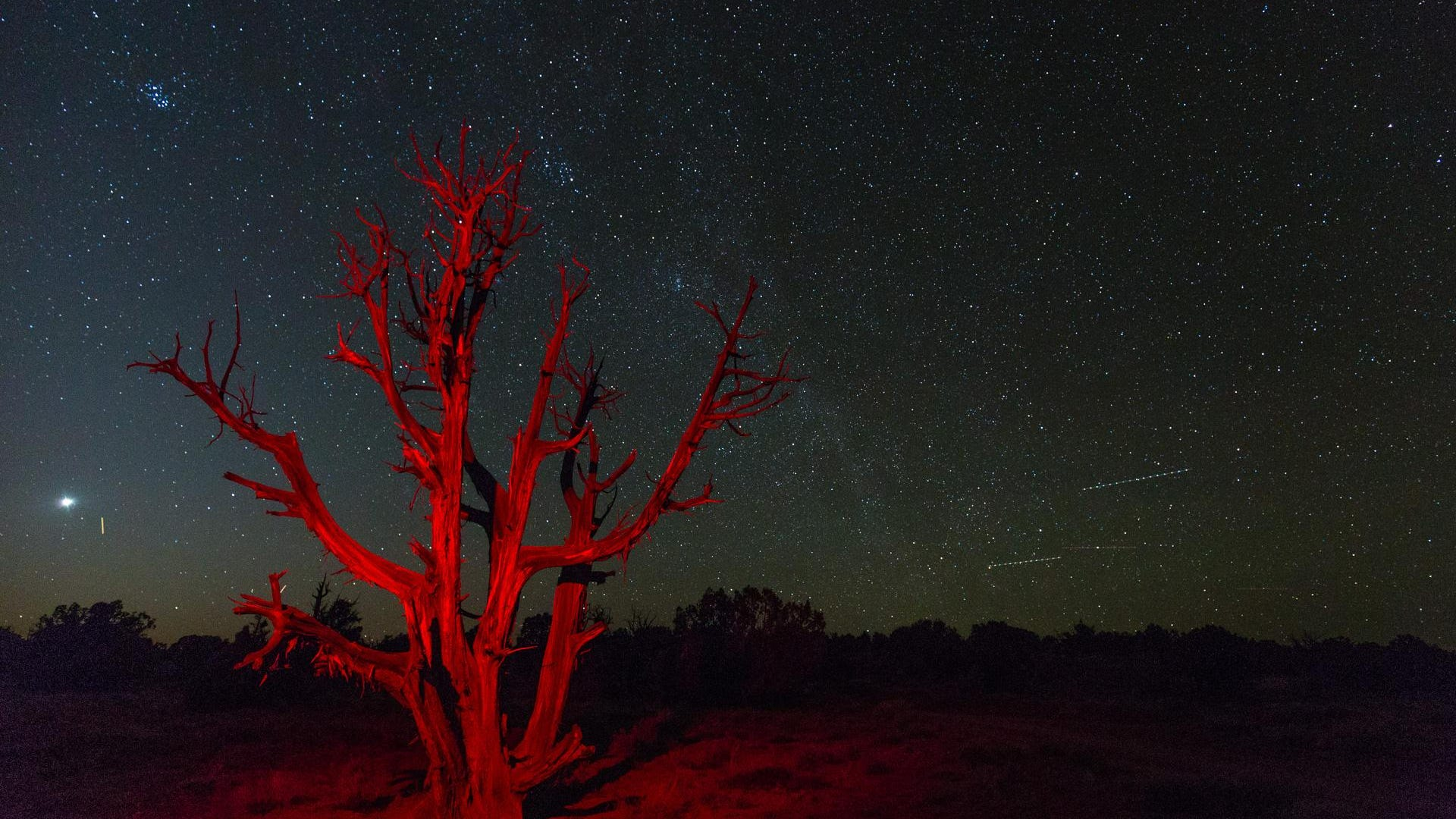 It's Dark Sky Month! Here's how Utah national parks, monuments are celebrating with you