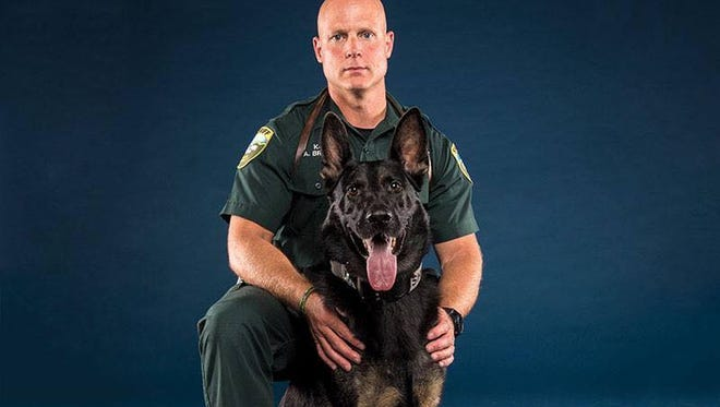 The Leon County Sheriff's Office is searching for Loki, one of its K-9s who went missing Friday night.