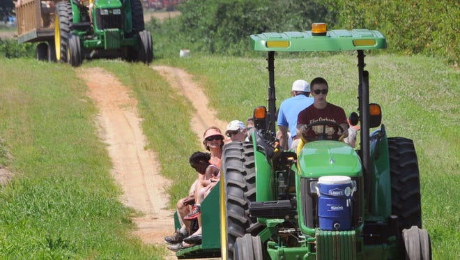 A farm tour at Fifer Orchards west of Wyoming.
