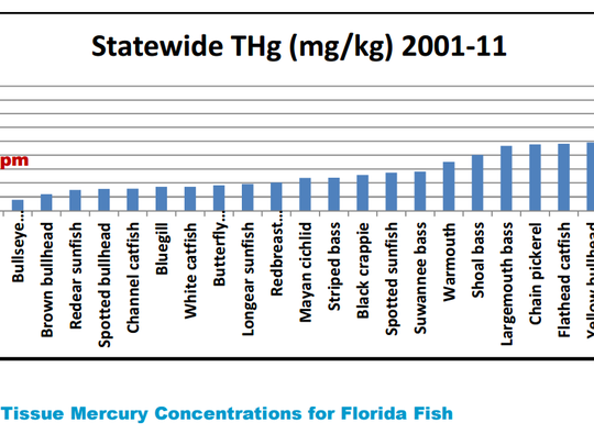 Spotted bass and common snook tested the highest for mercury among Florida fish, from 2001 to 2011.