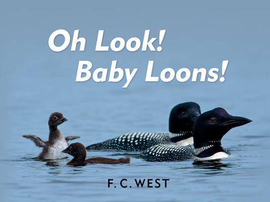 Cover FAL 0228 Book Baby Loons