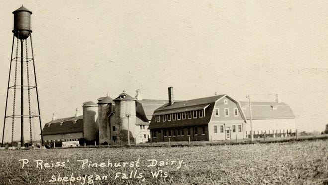 This is a classic view of the dairy complex at Pinehurst Farms in post card form. At one point the dairy had seven barns and seven houses on 500 acres. The water tower, erected in 1912, stood 125 feet above the barns and cows it served.