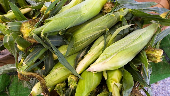 Home-grown corn for sale at Paul Mazza's farm stand in Colchester in 2009.