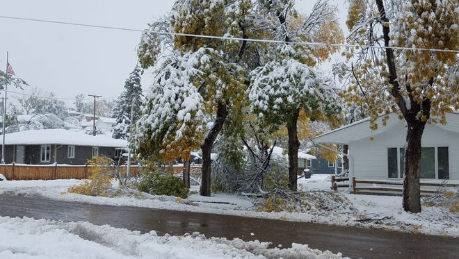 Havre received 14.8 inches of snow with the heavy wet snow breaking trees that are falling on power lines.