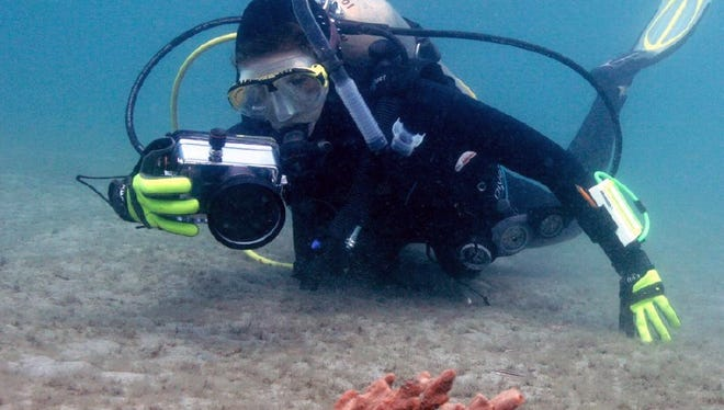 Chelsea Bennice will present 'Underwater Neighbors: The Ecology of Two Octopus Species in a Shallow Coastal Environment' on Jan. 31 at the Environmental Studies Center.