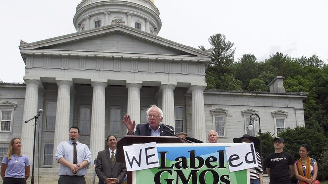 Democratic presidential candidate Sen. Bernie Sanders speaks at a rally the Vermont Statehouse, Friday July 1, 2016 in Montpelier, Vt., held to commemorate the implementation of the nation's first state law to require the labeling of foods made with genetically modified ingredients. (AP Photo/Wilson Ring)