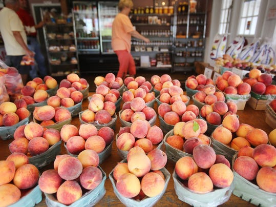 DFP Peach crop photo (2).JPG