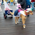 Ocean City's Boardwalkin' for Pets returns this weekend