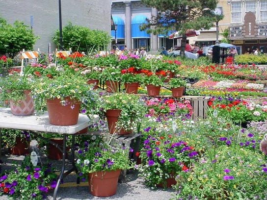 Flower Sale 2006 001