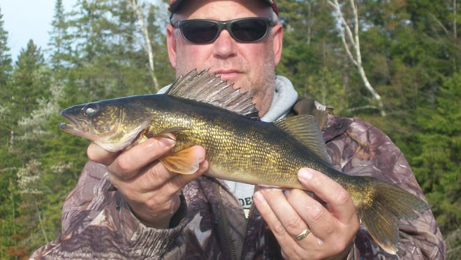 Eagle River walleye