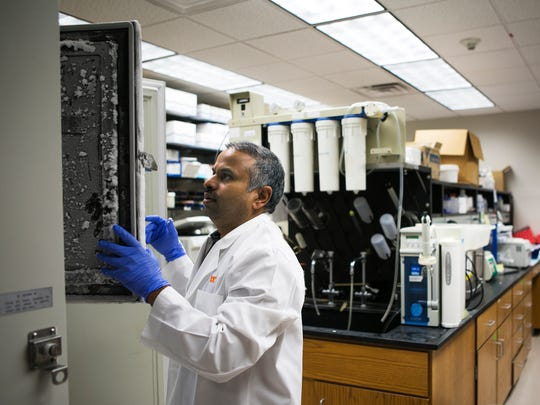 Thamarai Ponnusamy, instructor of medicine, hematology, works in a lab in the Cancer Research Building at the University of Tennessee Health Science Center on Friday, March 24, 2017. President Donald Trump's proposed budget cuts for the National Institutes of Health worries Memphis researchers.