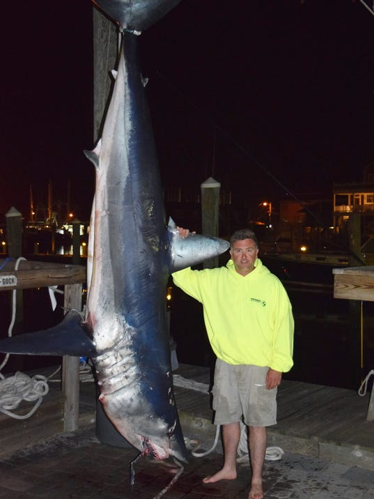 Near record mako shark weighed in at south jersey marina for Shark fishing nj