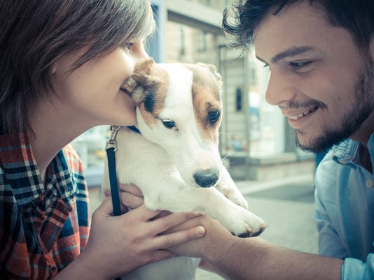Pets before kids? Couples try out how well they'll 'co-parent'