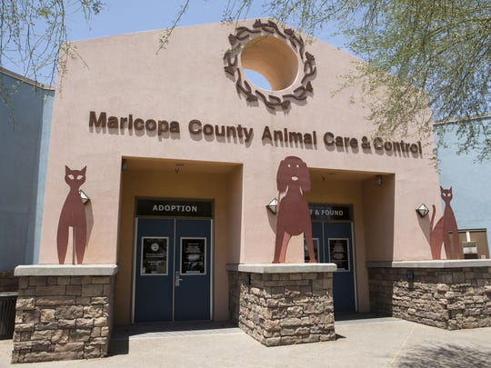 Maricopa County Animal Care and Control shelter shown