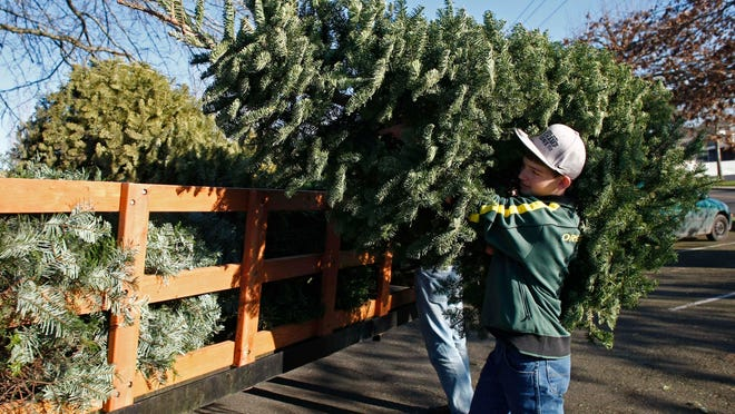 Skyler Bailey tosses a tree onto a trailer at the Boy Scout Troop 19 tree recycling location at the Walmart store on Commercial Street SE in 2012. The troop will again accept trees at the Walmart store Dec. 27-28, Jan. 2-4 and Jan. 10-11. They also will do tree pick ups.