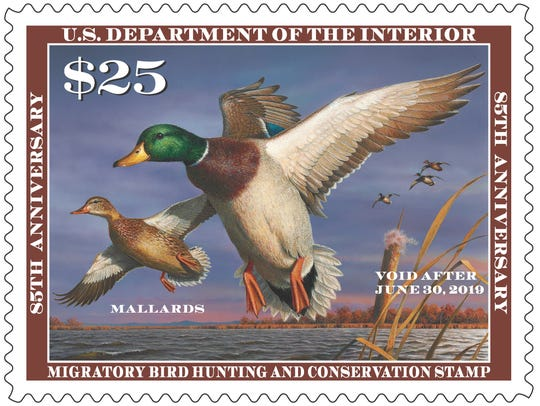 The 2018-'19 Federal Duck Stamp went on sale June 29.