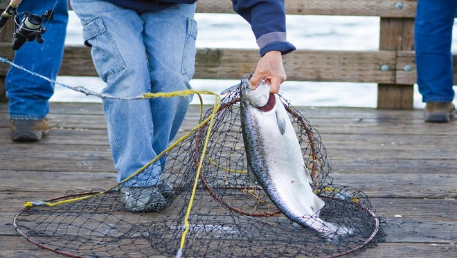 A fisherman with a caught salmon.