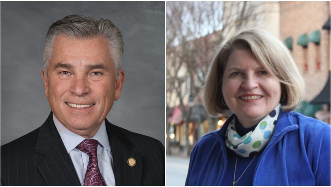 Sen. Jim Davis, left, and his Democratic opponent, Jane Hipps.
