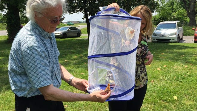 Papillion Center board member Tom Jones and counselor Sara Root release butterflies to celebrate the center's seven-year anniversary.