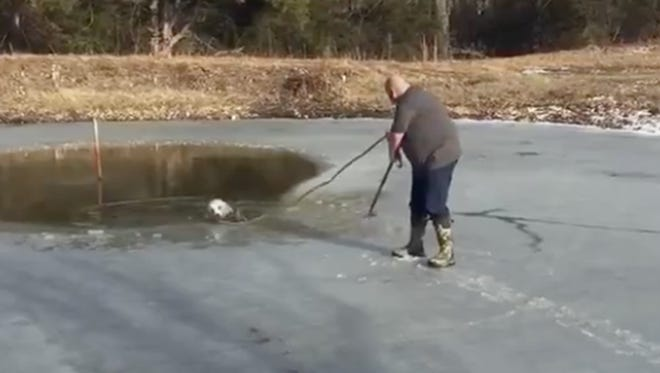 Marshfield resident Jeff Mann makes his way out onto the ice in an attempt to save a dog from his backyard pond.