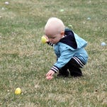 Titus Fjestad carefully picks up eggs during an Easter egg hunt in this file photo.