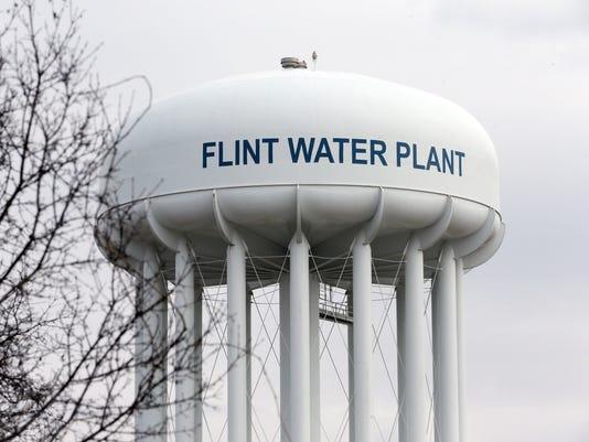 Flint-Water-Plant.jpg