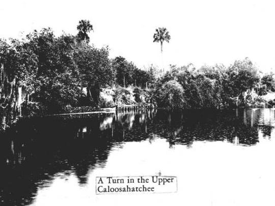 Thousands of birds could be seen along the Caloosahatchee. A turn in the upper part of the river is shown.