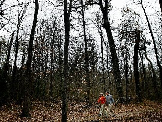 In this 2010 photo, Chris Wetzel (right) and Marsha Walton (left) chat as they walk through the old growth forest at Overton Park.