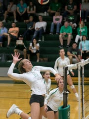 Alexis Piatkowski of Fort Myers goes up for a hit against