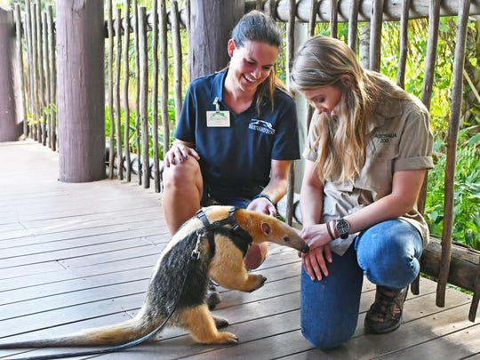 "Brevard Zoo will hold a ""Party for the Planet"" on April 21."