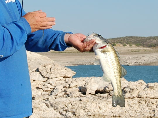 James Burkeen, Amistad Lake fishing guide shows a black bass.