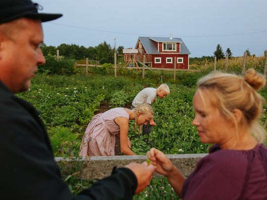 "Mark Hepokoski of Hancock shares snap peas from his garden with his wife, Riikka Hepokoski, as their children Greta, 10, and Johan, 13, pick more. ""We moved here and kind of fell in love with the area,"" Mark says."
