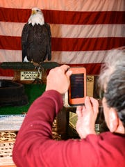 Uncle Sam, a bald eagle, appears at the Raptor Rendezvous