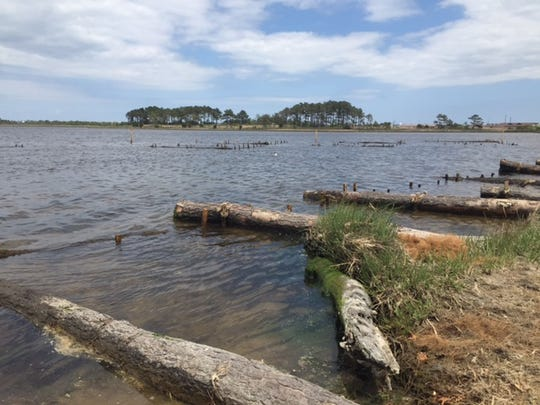 Logs are placed perpendicular to the shoreline to help reduce the impact of secondary wave action. Further off the beach, logs are placed in a zigzag pattern to dampen water movement.