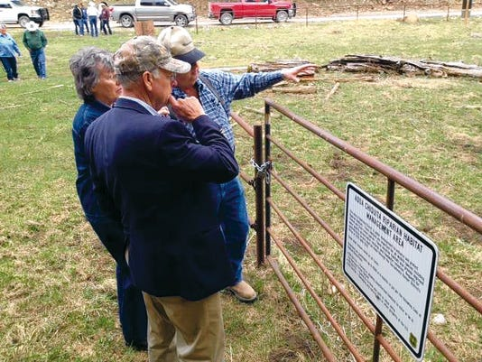 U.S. Rep. Steve Pearce looks over a fence that was blocked off by the Lincoln National Forest Service. Ranchers say elk and other animals can still jump over the fence and graze the grass. Ranchers say their cattle should not be a problem.