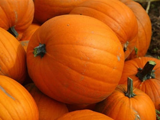 pumpkins_getty_1382410781936_1136377_ver1.0_1414586037368_9377490_ver1.0_640_480.jpg