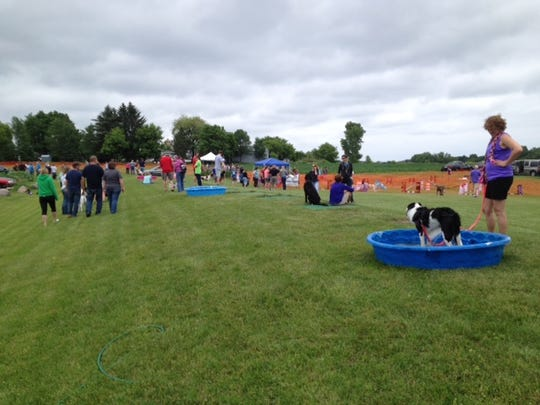 About 275 people — and all kinds of pets — attended Happily Ever After Animal Sanctuary's fifth annual June Jamboree on June 22 at Chambers Hill in Suamico.