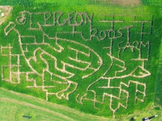 PRF Corn Maze 2014.jpg