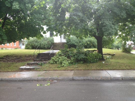 A tree limb down on Genesee Street in Geneva.