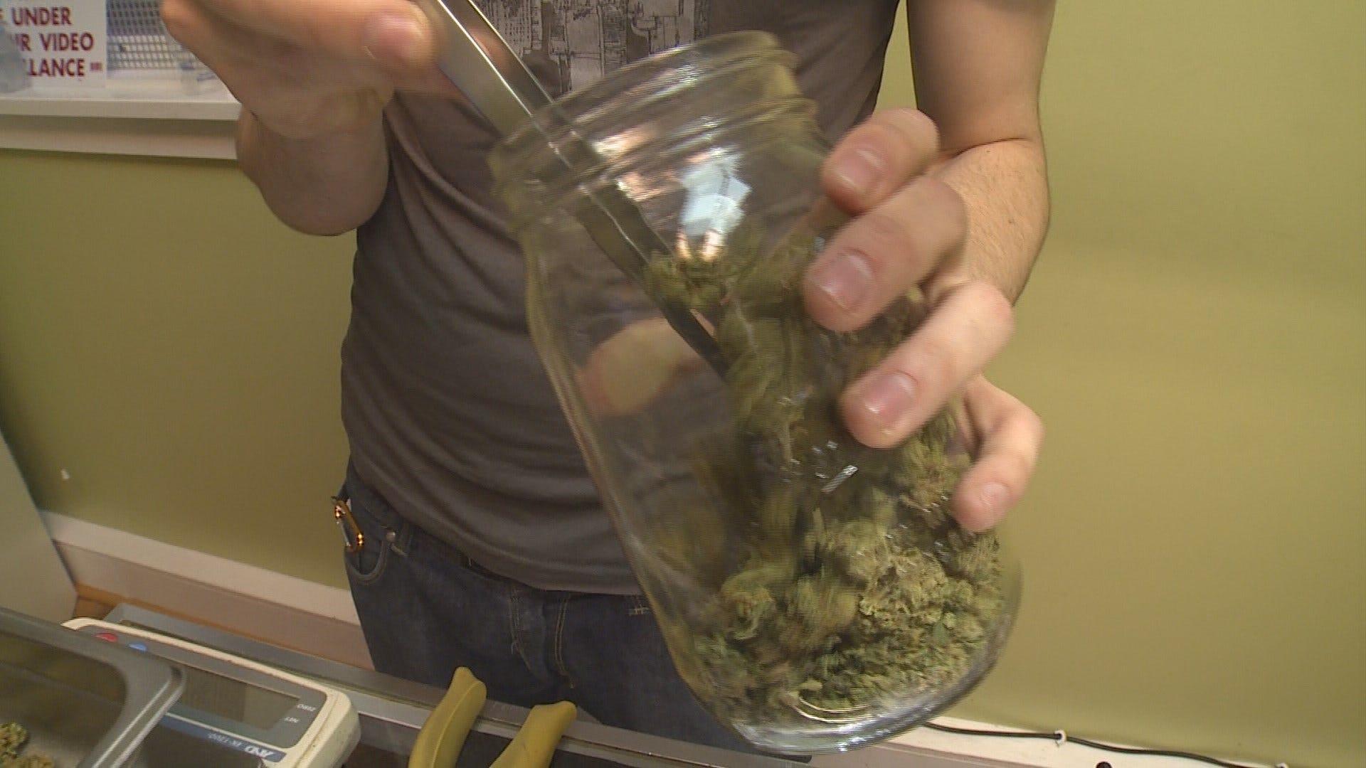 marijuana seeds uk visas