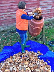 "Put those fallen leaves to good use by adding them to the compost. They make for ""black gold"" in the garden come springtime."