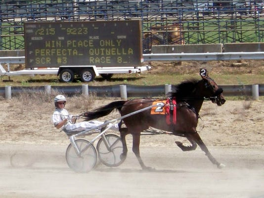 FAIR - Harness Racing