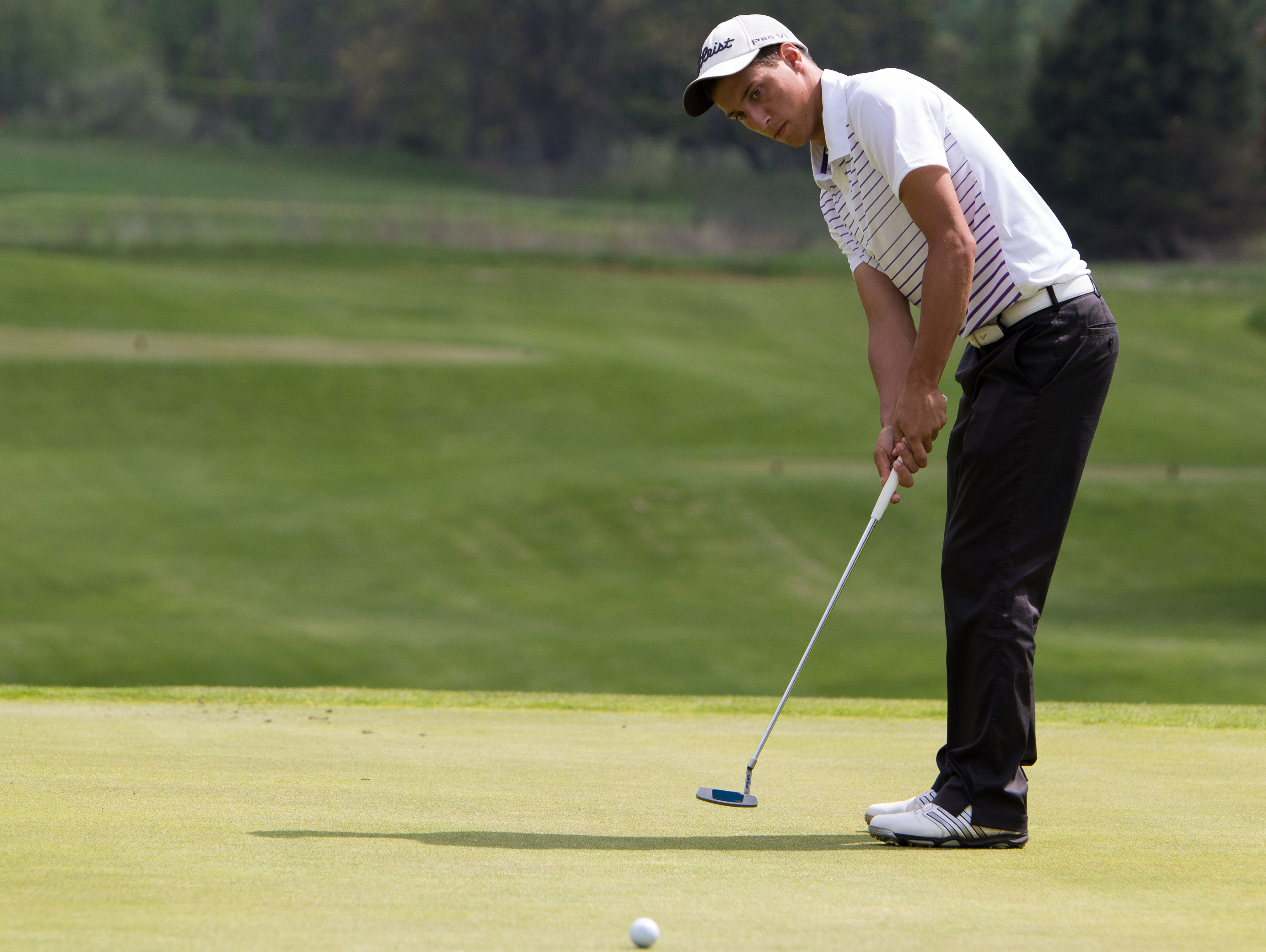 Lakeview's Matthew Alderink finished second at the boys' All-City golf tournament on Friday.