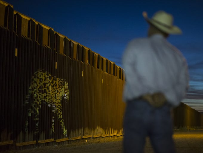 An image of a jaguar is projected on the border wall