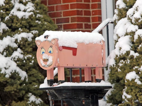 A pig mailbox along Faulkland Road got a coat of snow overnight.