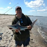 Rodgers: Tough fishing with tons of sandbar sharks in the Delaware Bay