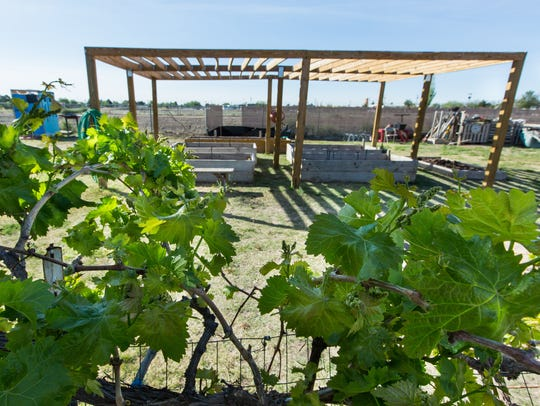 Grapevines and fruit trees grow along the exterior