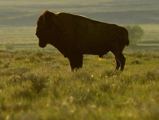 Main photo American Prairie Reserve