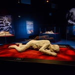 Pompeii: The Exhibition at Arizona Science Center features over 200 artifacts through May 28